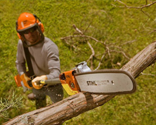 Pole Pruners & Ext. Tree Saws